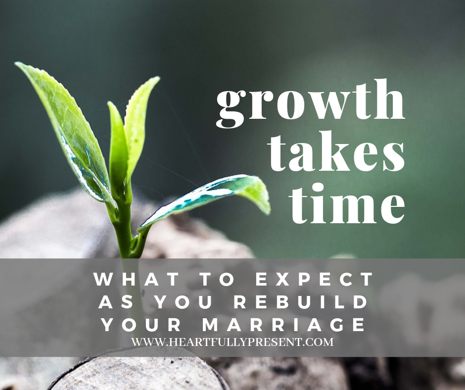 new growth | green plant | growth in marriage