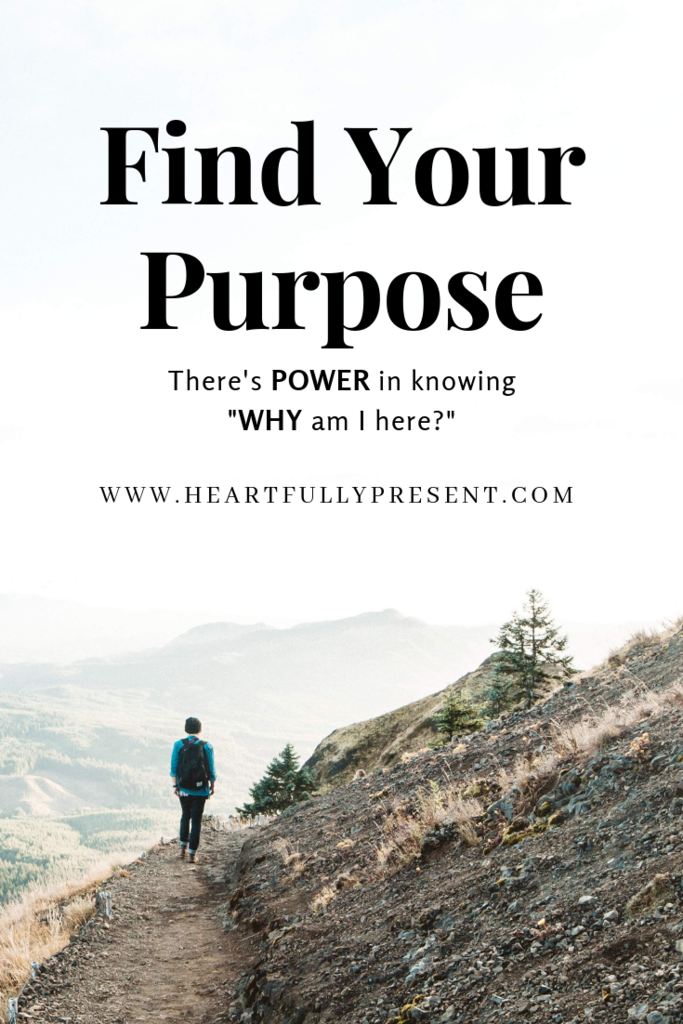 Find your purpose | man on mountain | what's your why